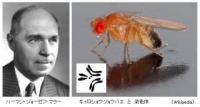 第183回男塾「誤解されている放射能」前編